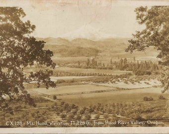 Vintage Oregon | Antique 1938 Black and White Photo Postcard of the Hood River Valley in Oregon