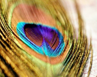 Peacock Feather Gold Blue Green Teal Aqua Peacock Decor Metallic Abstract Macro Retro Inspired Art, Fine Art Print