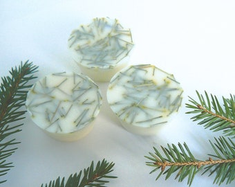 Pine Needle & Sandalwood Soy Wax Melts with Essential Oils (Pack of 4)