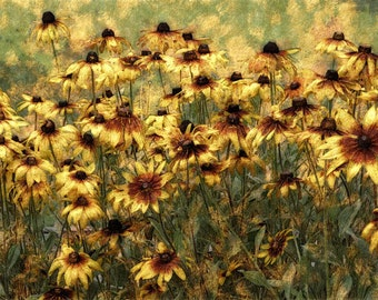 Sofa Size Art, Giclee Print, Impressionist Art, enhanced photography
