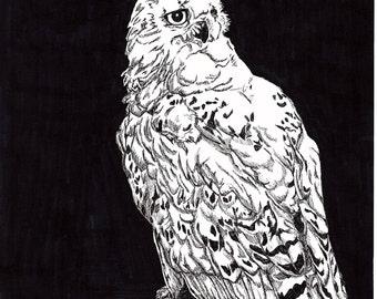 Hedwig print - Harry Potter - Micron pen - Copic marker - animal companion