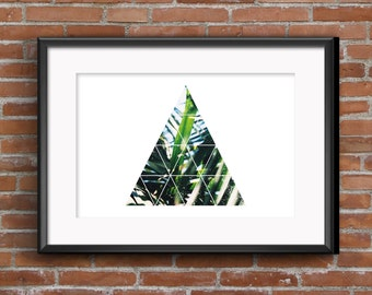 Geometric Palm Trees Triangle
