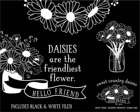 Daisy Black And White Clipart
