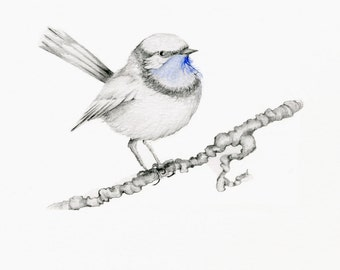 Bird Print Blue Bird Art Print of My Original Drawing Giclee Art Print of a Black and White Bird with Blue Selective Coloring Bird Decor Art