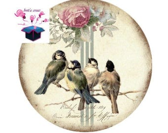 1 cabochon clear 18 mm vintage birds theme