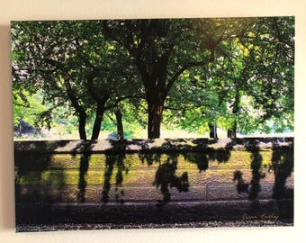 Central Park print on Canvas