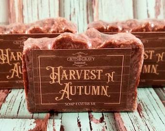 Harvest N Autumn Soap, Pumpkin Soap, Oatmeal Soap, Honey Soap, Fall Scented Soap, Cinnamon Soap, Acne Soap, Christmas Gifts, Stocking Stuff