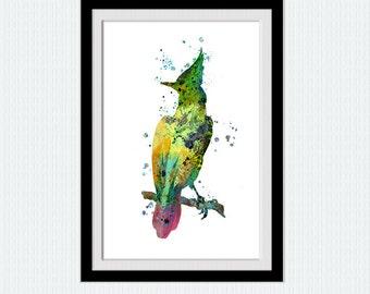 Woodpecker watercolor print Bird colorful poster Home decoration Kids room art decor Bird wall decor art Christmas gift Bird print art  W306