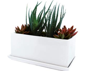 Succulent and Herb Planter Pot with Tray - Window Box - Modern Ceramic Design