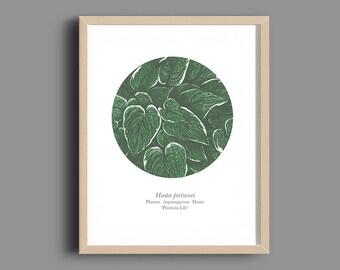 Hosta Green Print