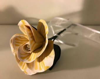 Yellow and white sunrays rose