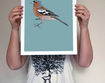 Charlie the Chaffinch A3 Giclée Print