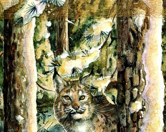 Silent Seeker - Bobcat - Limited Edition Reproduction Giclee Print in 16x20 black mat