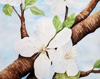 Blossoms.   Original 11 x 14 Watercolor
