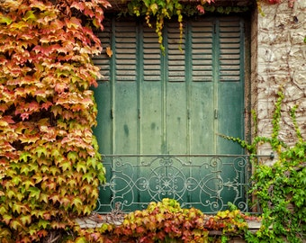 French Door Photography, Autumn Colors, Leaves, Rustic, France, Travel Print, Country Decor, Virginia Creeper, Cottage, Home Decor, Wall Art