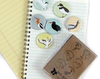 Shorebird Magnets | Boxed Set of 6 | nature outdoors birder beach ocean wildlife stocking stuffer fridge magnet birdwatcher