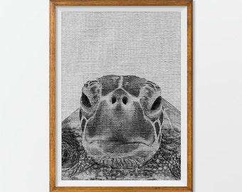 Turtle Print Turtle Photography Turtle Art - Sea Turtle Print Nursery Art
