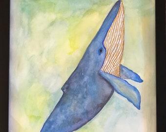 Whale Sail