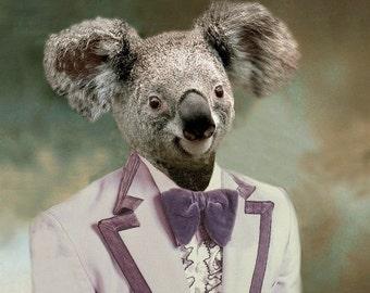 Kevin the Koala  - 5 X 7 Fine  Art Print