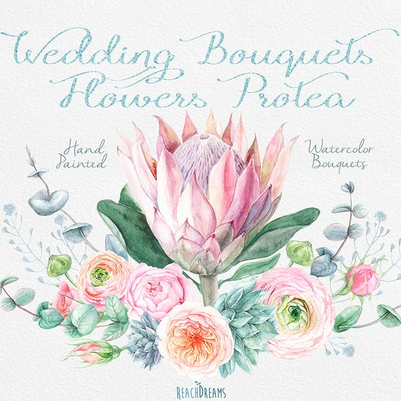 Wedding Watercolor Bouquets Protea Flowers, Roses, Eucalyptus ...
