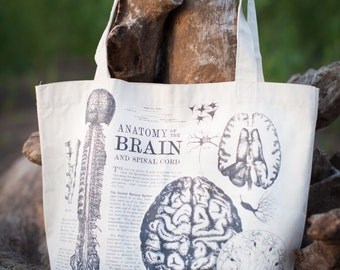 Brain & Neurons Anatomy Illustration Tote Bag | Recycled shoulder bag, neuroscience, Future Nurse, nursing, teacher gift, science gift