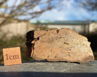 L4/5 Common Chondrite Meteorite - found in North Africa - Genuine Space Rock - RST006