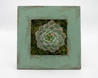 Green Garden Framework