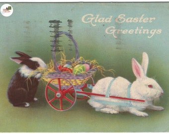 """Real-life White Easter Bunny and Black and White Easter Bunny in Basket Wagon """"Glad Easter Greetings""""  Easter Greeting Vintage Postcard"""