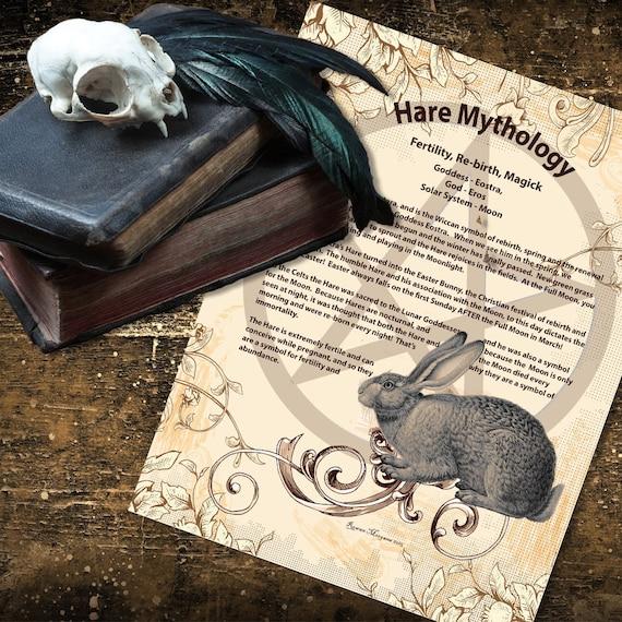 Hare Mythology