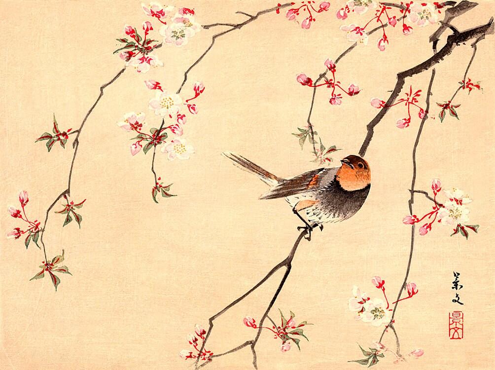 Bird and Flower japanese art Red Avadavat and Cherry FINE ART