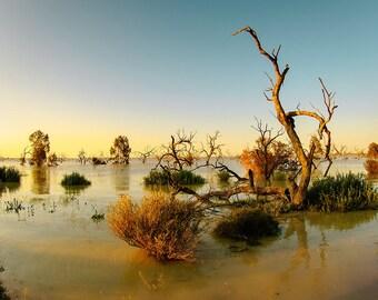Landscape Fine Art Print, Australia, Lake Menindee in the outback