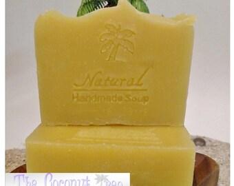 Anakin's Anti-Germ Soap / Antibacterial Soap / Immune Boosting Soap / face soap / immune booster / vegan soap