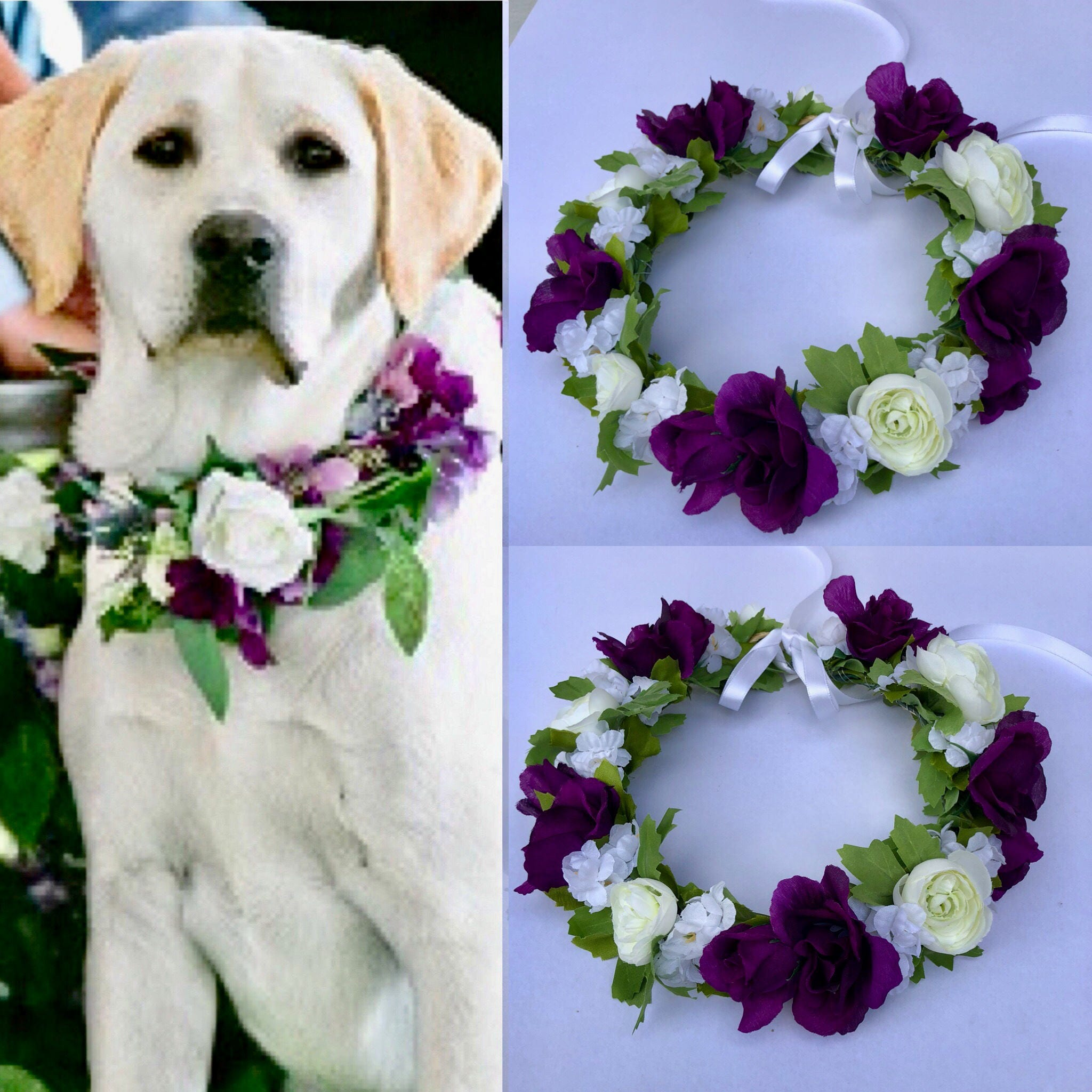 Dog of honor dog wedding collar pet wedding attire dog flower zoom izmirmasajfo Gallery