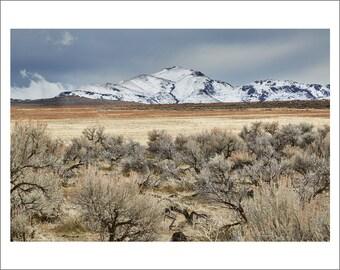 Antelope Island - Salt Lake City - Utah - Color Photo Print - Fine Art Photography (SLC07)