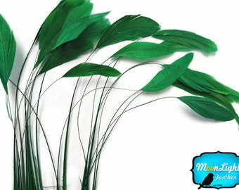 Stripped Feathers, 1 Dozen - KELLY GREEN Stripped Coque Tail Feathers: 342