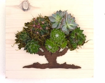 Oak Tree Succulent And Cacti Vertical Garden | Tree Of Life Vertical Planter  | Living Wall