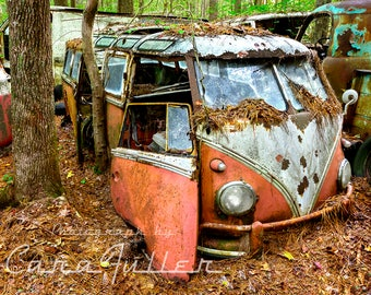 23 Window Pink VW Bus in the woods Photograph