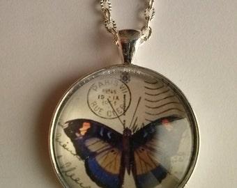 butterflies picture pendant butterfy necklace