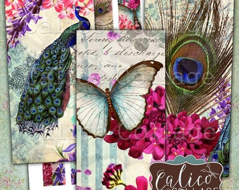Printable, Domino Collage Sheet, Spring Peacock, 1x2 Inch Images, Domino Images, Printable Paper, Image Sheet, CalicoCollage, Jewelry Images