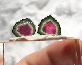 Beautiful watermelon tourmaline slices pair 13.75 cts P12