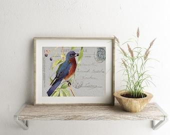 Blue Bird Postcard - Instant download, printable art