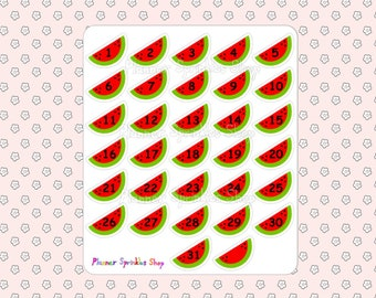 Watermelon Date Covers Planner Stickers