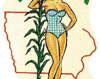 Vintage Style Des Moines IA  Iowa  pin-up girl   Travel Decal sticker