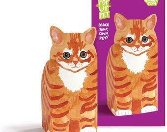 Pop Up Pet Cat - Ginger Tom