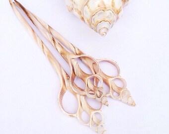Sliced Seashell Hair Pin