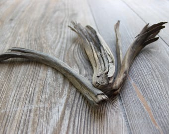 Collection of 3 Frayed Dark Driftwood Pieces , Rustic Art , Natural Rustic Home Decor DR3