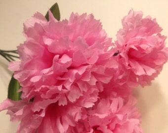 pink carnation bouquet  (SF)