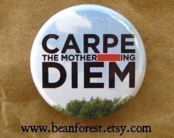 carpe the mf diem  -mature- - pinback button badge