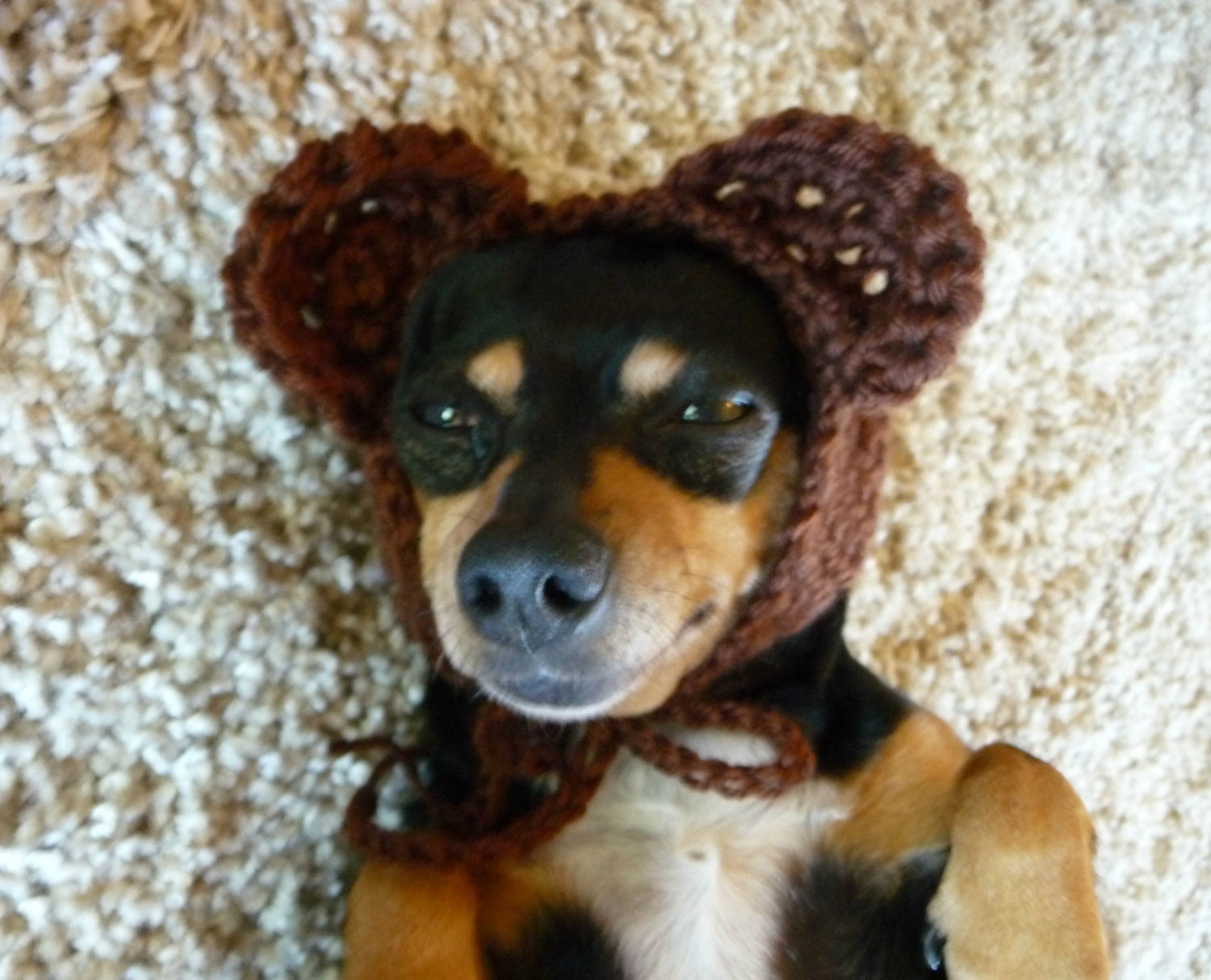Funky Crochet Pattern Dog Hat Image - Sewing Pattern for Wedding ...