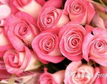 Digital Download Pink Roses Flower Photo Print, Botanical, Flower Photography